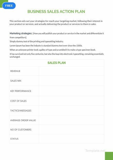 Sales Action Plan Template Free Business Sales Action Plan Template Pdf
