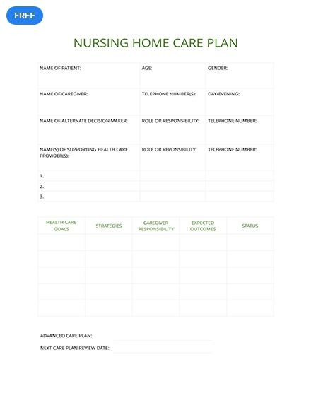Service Plan Template social Work Free Nursing Home Care Plan Template Pdf