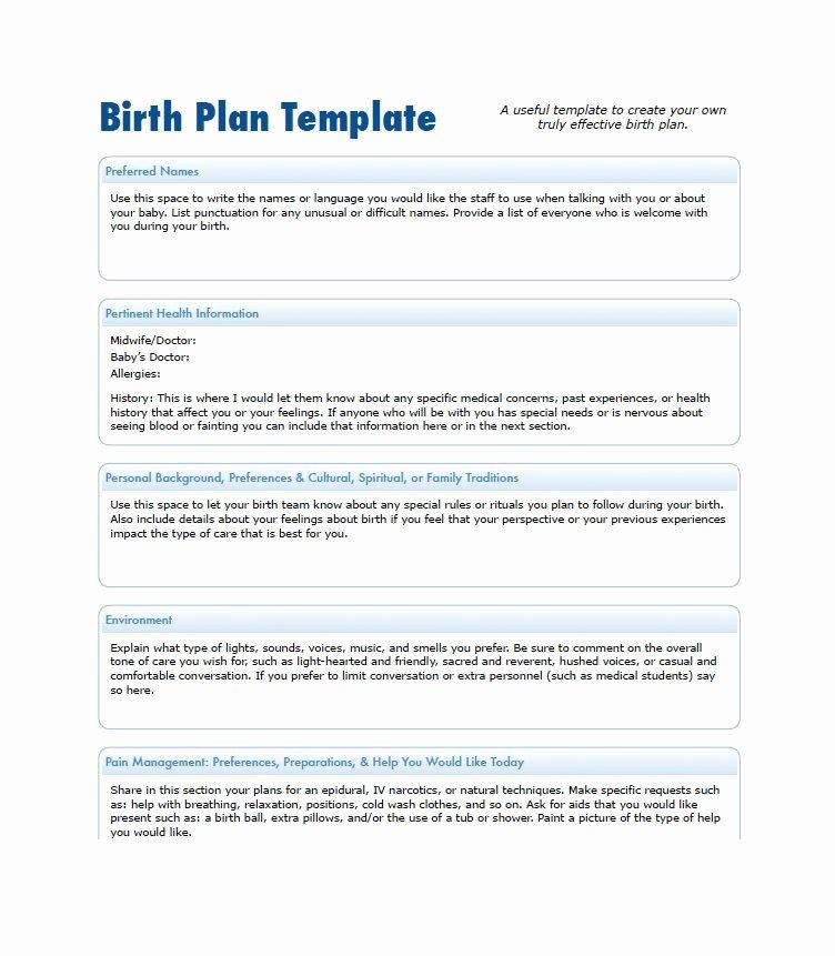 Simple Birth Plan Template Printable Birth Plan Template Inspirational 47 Printable