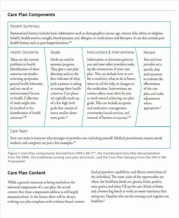 Social Work Care Plan Template Care Plan Template Unique Nursing Home Care Plans Template