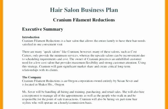 Spa Business Plan Template Hair Salon Business Plans Awesome Business Plan for Beauty