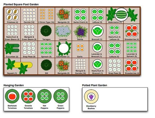 Square Foot Garden Planting Template Pin by Danielle Ramsey On Garden and Hardscapes