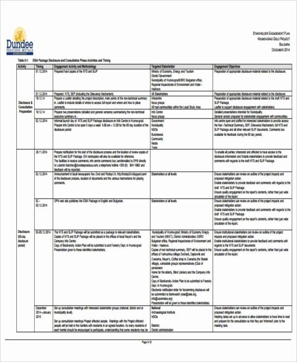 Stakeholder Management Plan Template Excel Stakeholders Management Plan Template Beautiful 34