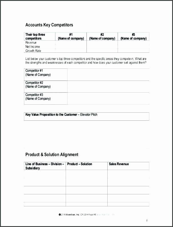 Strategic Account Plan Template Strategic Account Plan Template Best Account Plan Example