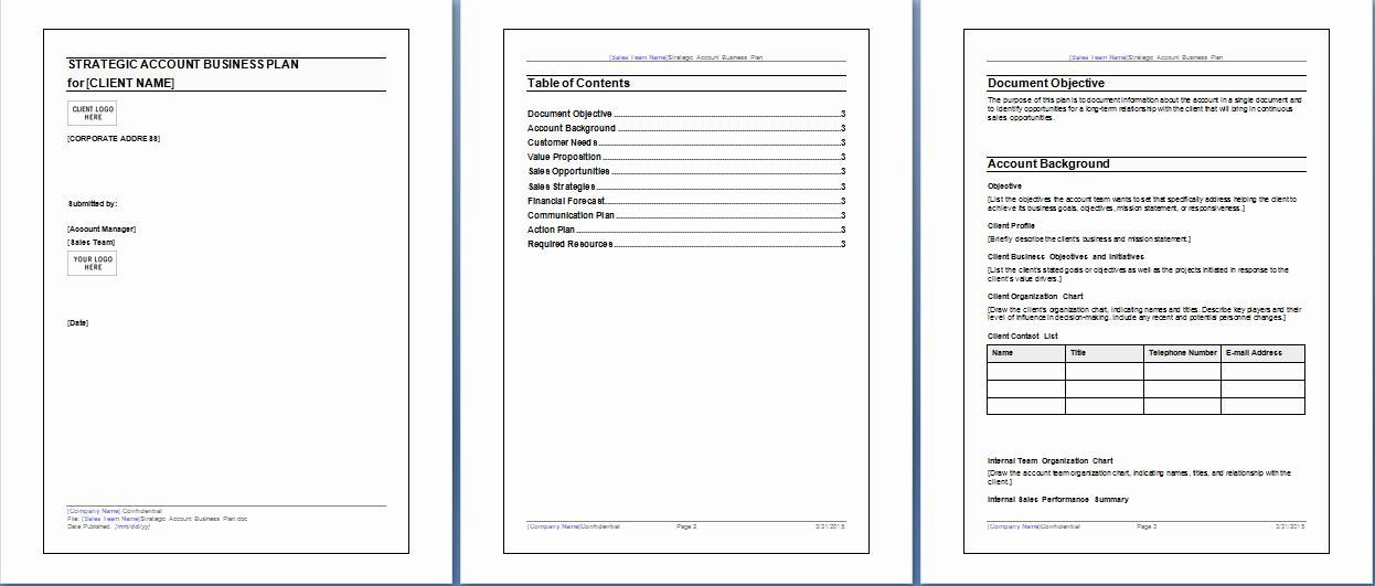 Strategic Account Plan Template Strategic Account Planning Template Awesome Microsoft Word