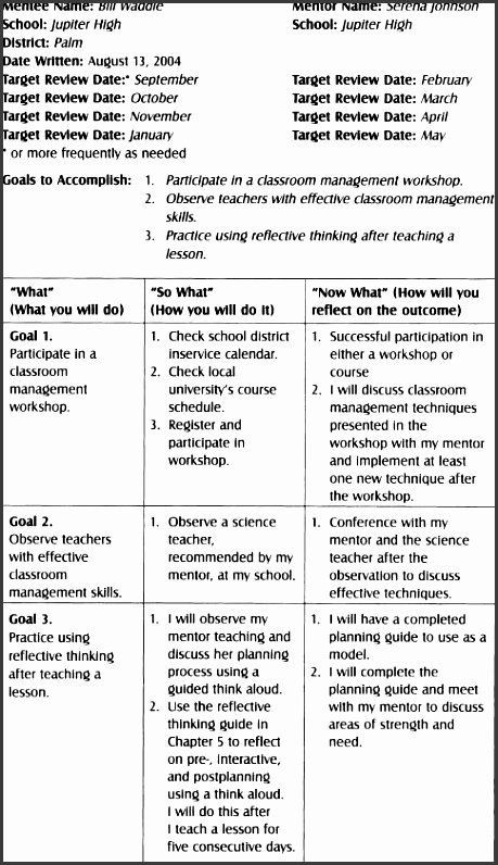 Teaching Action Plan Template Teaching Action Plan Template Inspirational 6 Action Plan