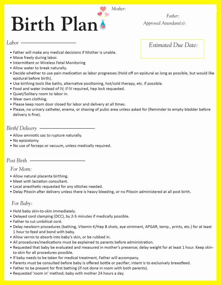 The Bump Birth Plan Template Pin On Simple Business Plan Templates
