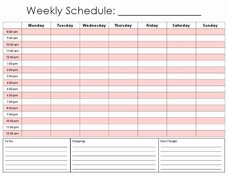 Weekly Hourly Planner Template Excel Daily Hourly Schedule Template Elegant Printable Hourly
