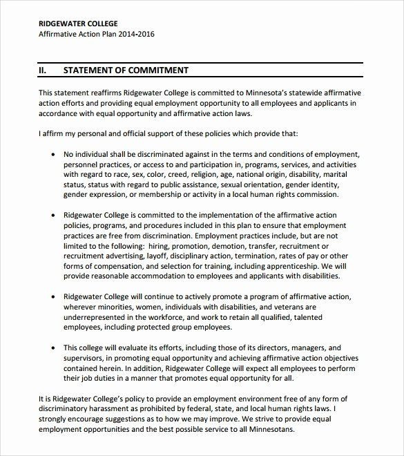 Whole Foods Action Plan Template Affirmative Action Plan Sample Lovely Sample Affirmative
