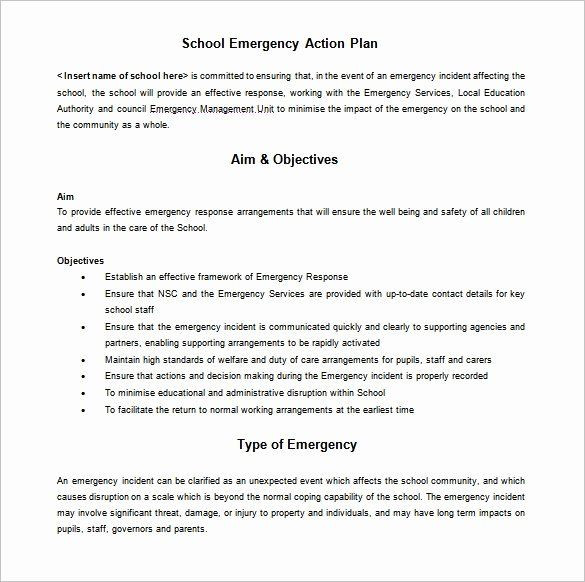 Whole Foods Action Plan Template Emergency Action Plan Sample Luxury 12 School Action Plan