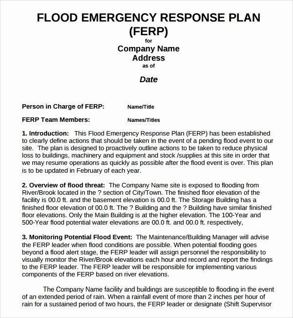 Whole Foods Action Plan Template Emergency Management Plan Template Beautiful Sample