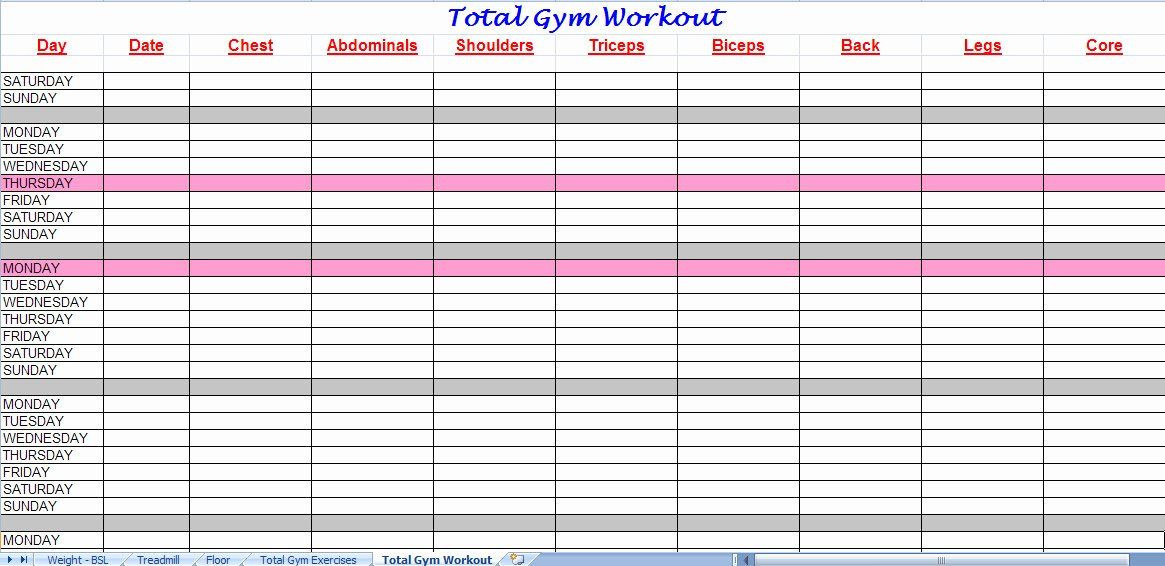 Workout Plan Template Excel Workout Schedule Template Excel Luxury 3 Excel Workout