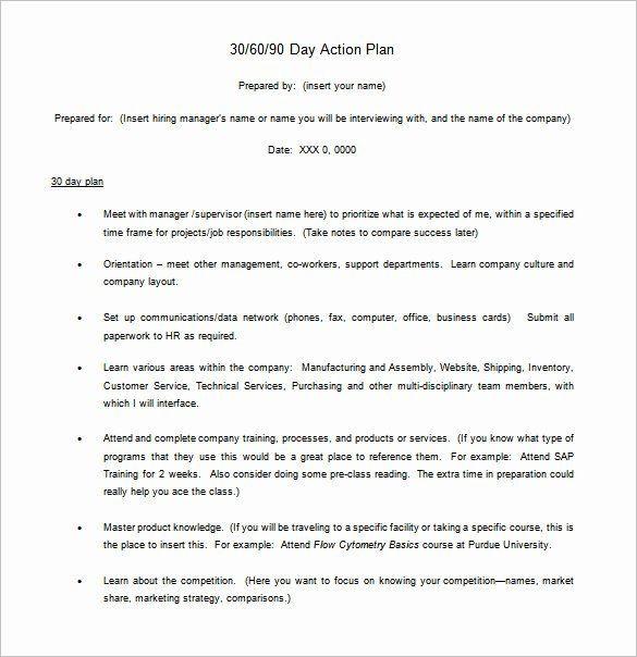 30 Day Action Plan Template 90 Day Action Plan Template Elegant 12 30 60 90 Day Action