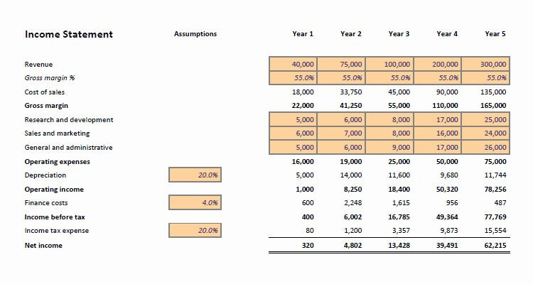 5 Year Financial Plan Template 5 Year Financial Plan Template Luxury Financial Projections