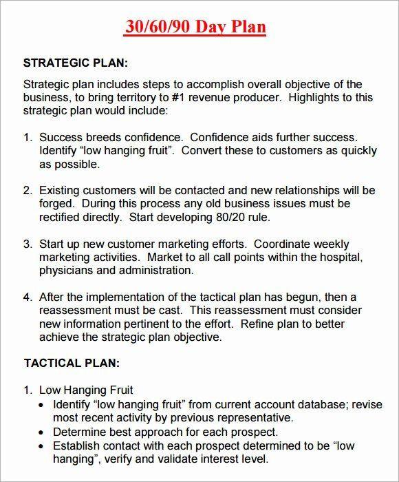 90 Day Action Plan Template 30 Day Action Plan Template New 14 Sample 30 60 90 Day Plan