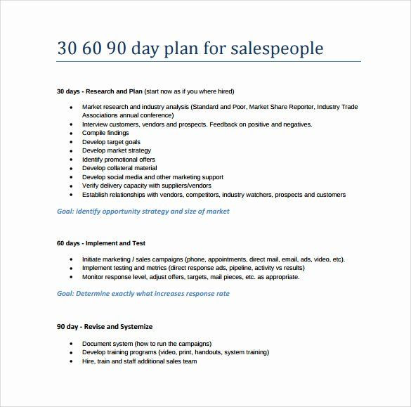 90 Day Entry Plan Template 30 Day Plan Template Luxury 28 30 60 90 Day Plan Samples In