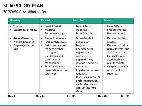 90 Day Management Plan Template 30 60 90 Day Sales Plan Template