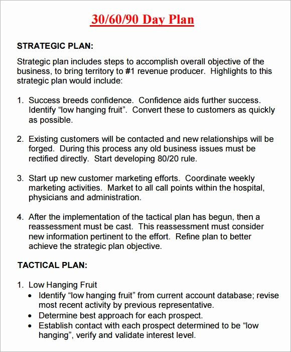 90 Day Plan Template Excel 30 60 90 Plan Templates Luxury 14 Sample 30 60 90 Day Plan