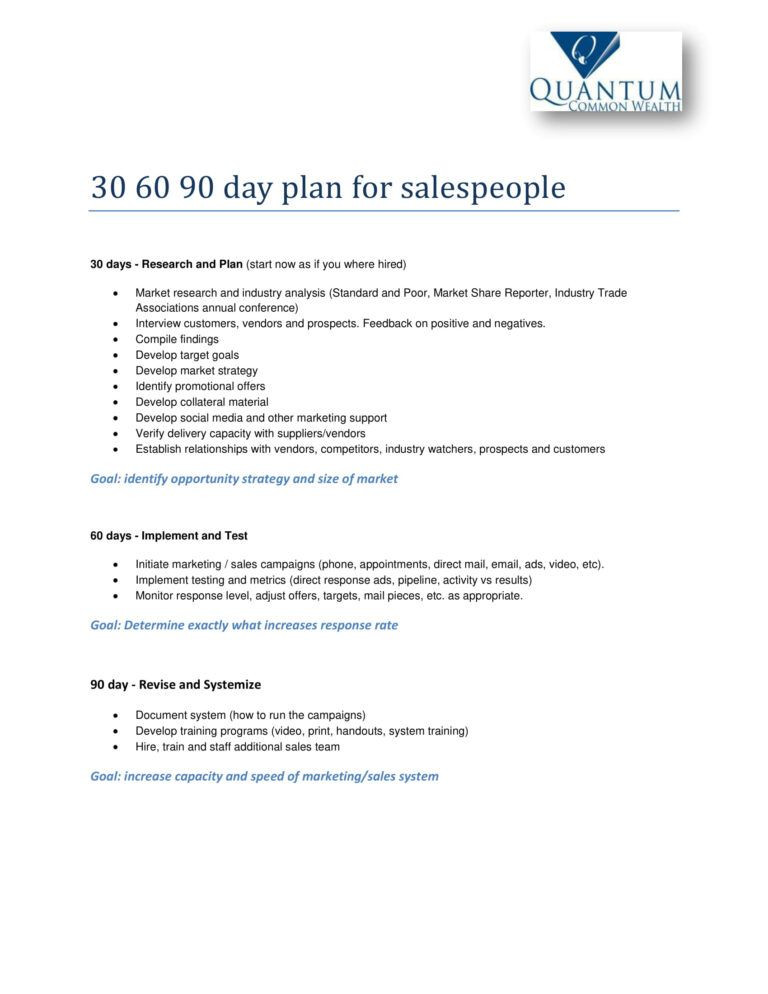 90 Day Sales Plan Template 12 30 60 90 Day Sales Plan Examples Pdf Word
