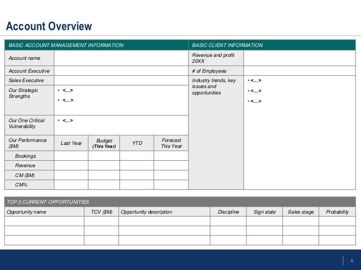 Account Management Plan Template Account Management Plan Template Luxury Flevy Account