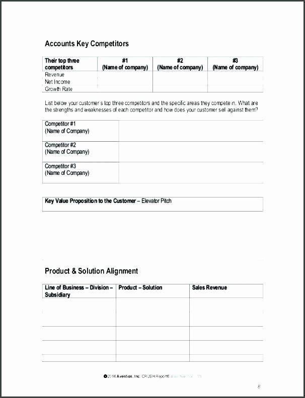 Account Management Plan Template Strategic Account Plan Template Best Account Plan Example