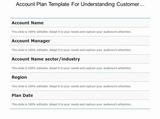Account Plan Template Ppt Account Plan Template Ppt Elegant Account Plan Template for