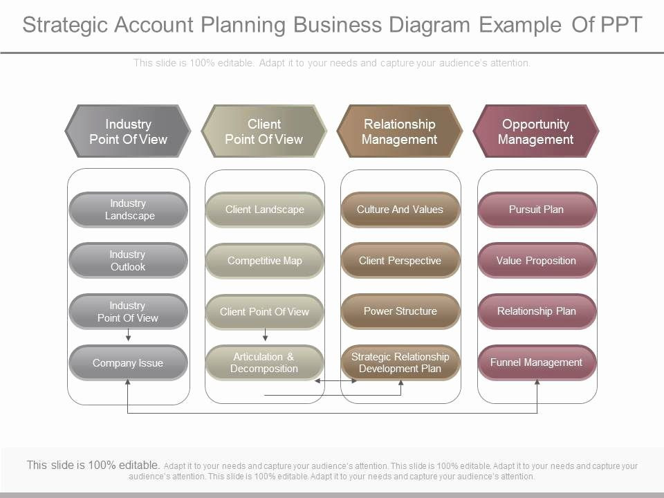 Account Plan Template Ppt Account Plan Template Ppt Elegant Apt Strategic Account