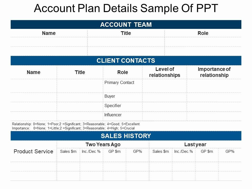 Account Plan Template Ppt Account Plan Template Ppt Luxury Account Plan Details Sample