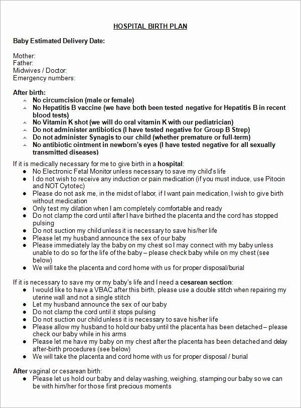 Birth Plan Template Word Doc Birth Plan Template Word Doc Awesome Free 23 Sample Birth