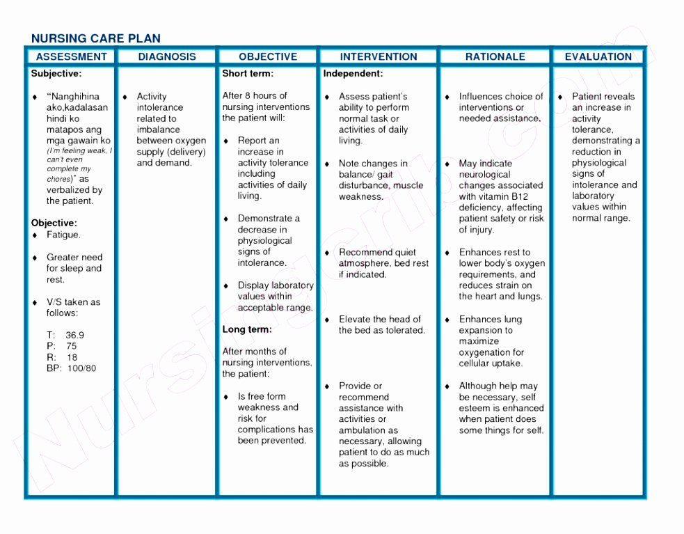Blank Nursing Care Plan Template Nursing Care Plan Template Best Blank Nursing Care Plan