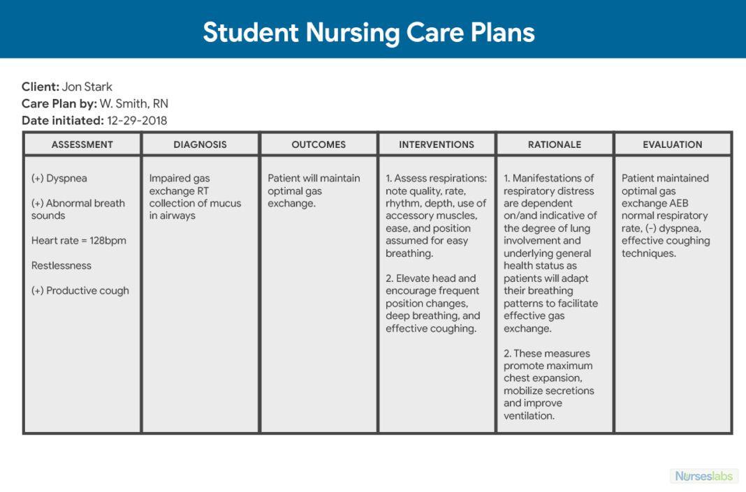 Blank Nursing Care Plan Template Pin On Blank Template
