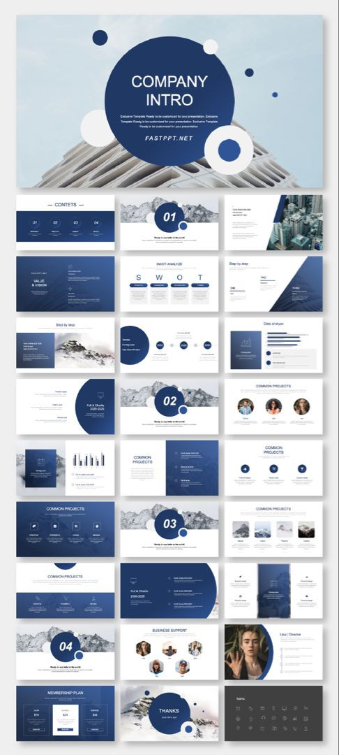 Business Plan Powerpoint Template Free A Business Plan & Introduction Presentation Template