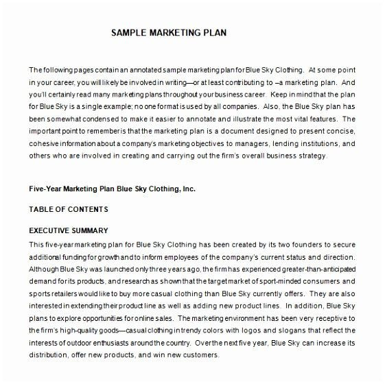 Clothing Line Business Plan Template Clothing Line Business Plan Template Luxury 12 Clothing Line