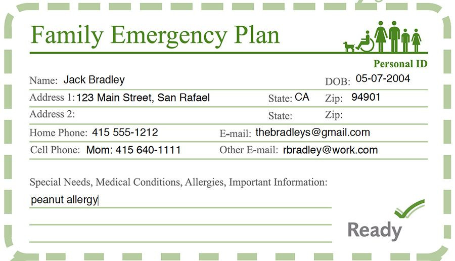 Family Disaster Plan Template Family Disaster Preparedness Ready Marin