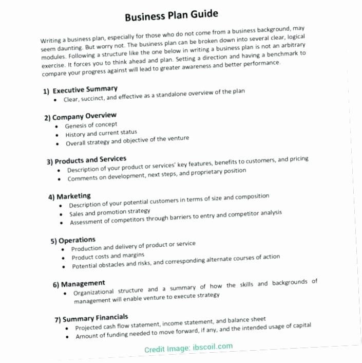 Franchise Business Plan Template Franchise Business Plan Template Lovely Business Plan for