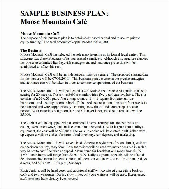 Hotel Business Plan Template Hotel Business Plan Pdf Lovely Sample Business Plan Template