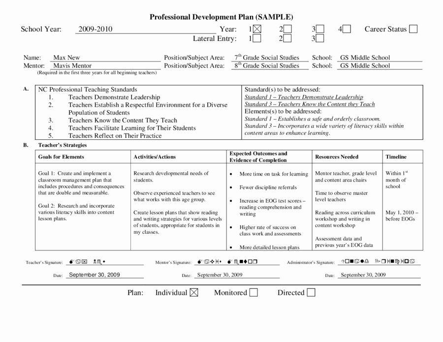 Individual Development Plan Template Word Individual Development Plan Template Unique Personal