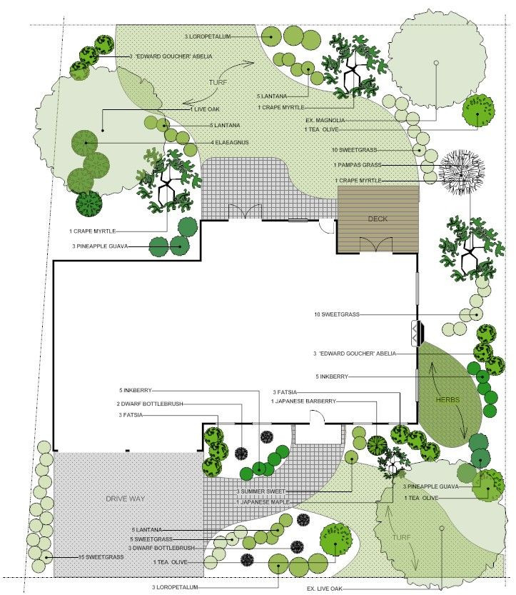 Landscaping Plan Template Save Water with these 5 Landscape Planning Tips