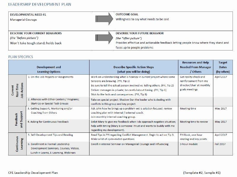 Leadership Development Plan Template Leadership Action Plan Example Awesome Line Leadership