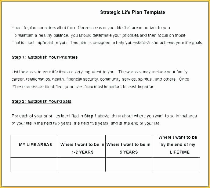 Life Plan Template Strategic Life Plan Template Luxury 5 Year Life Plan