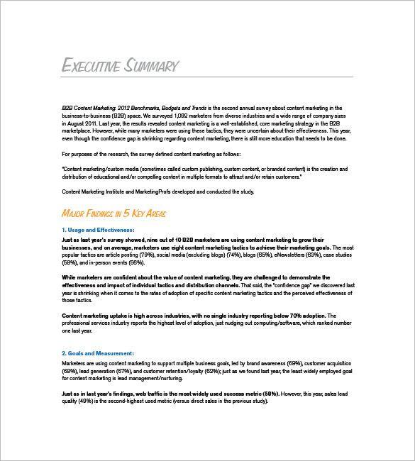 Marketing Plan Executive Summary Template Marketing Plan Executive Summary