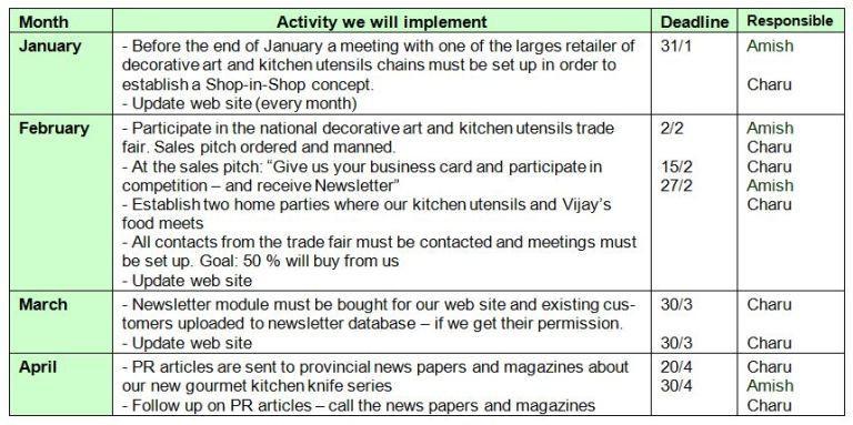 Marketing Plan Template Word Marketing Action Plan 51