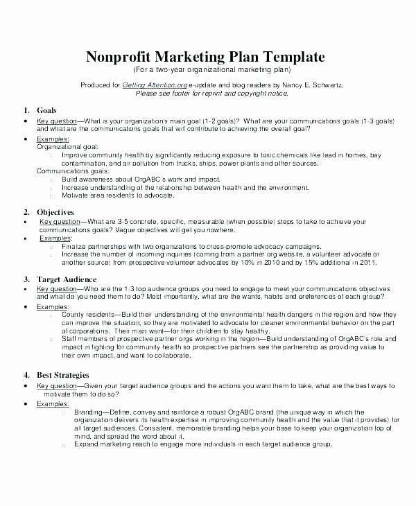 Nonprofit Marketing Plan Template Non Profit Development Plan Template Lovely Fundraising Plan
