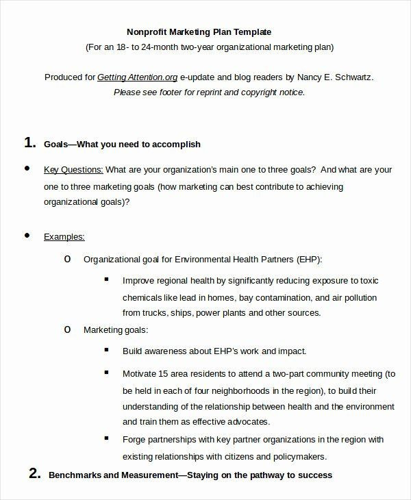 Nonprofit Marketing Plan Template Non Profit Marketing Plan Template Unique Marketing Plan