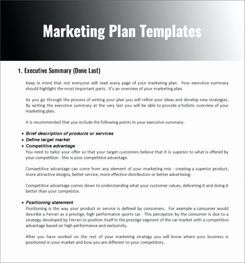 Nonprofit Marketing Plan Template Nonprofit Marketing Plan Template Awesome Non Profit