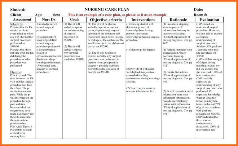 Nursing Care Plan Template Blank 016 Nursing Care Plan Template Blank Magnificent Ideas forms