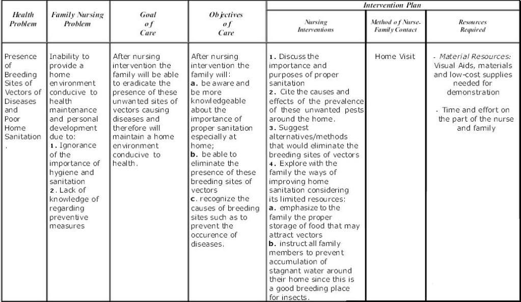 Nursing Care Plan Template Fncp This Was Uploaded by Schizo28 Find Other
