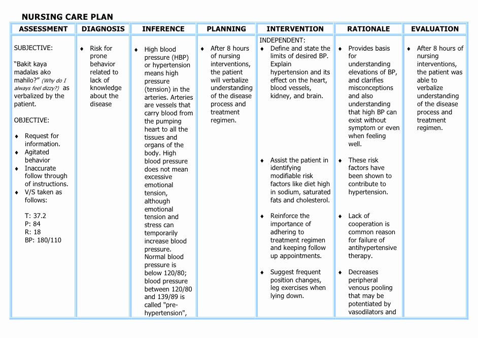 Nursing Care Plan Template Nursing Care Plans Template Awesome Understanding the Nanda