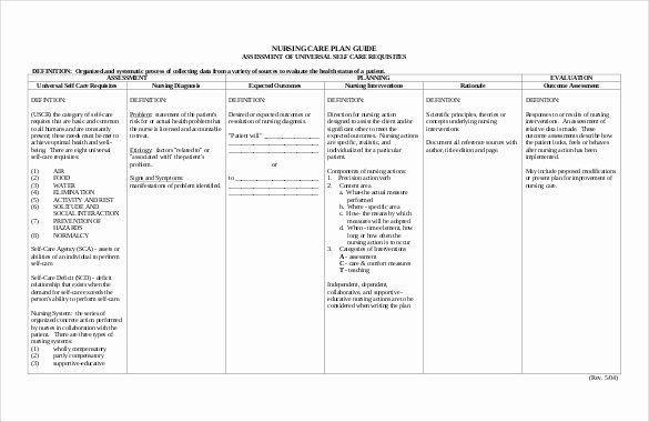 Nursing Care Plan Template Word Care Plan Template Unique Nursing Care Plan Template 20 Free