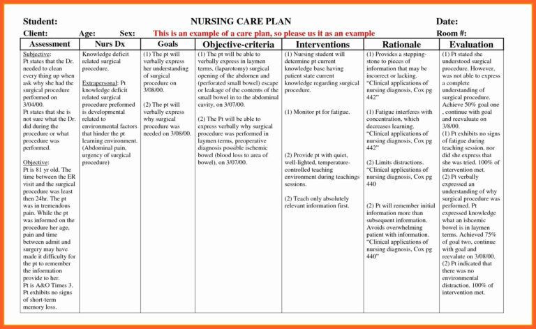 Nursing Care Plan Template Word Example Care Plan Template for Elderly Nursing Home